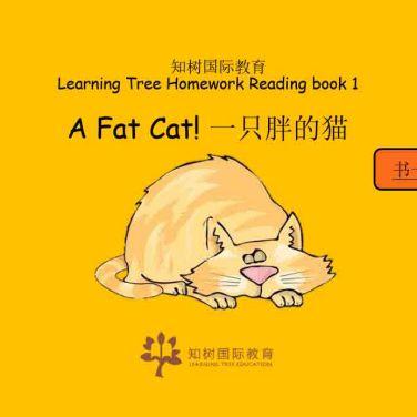 Educational writing
